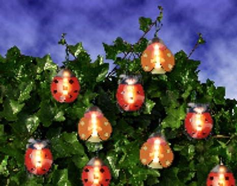 Decorazioni Luminose Per Interni : Incantevoli catena luminosa per alberi cespugli piante e piatto