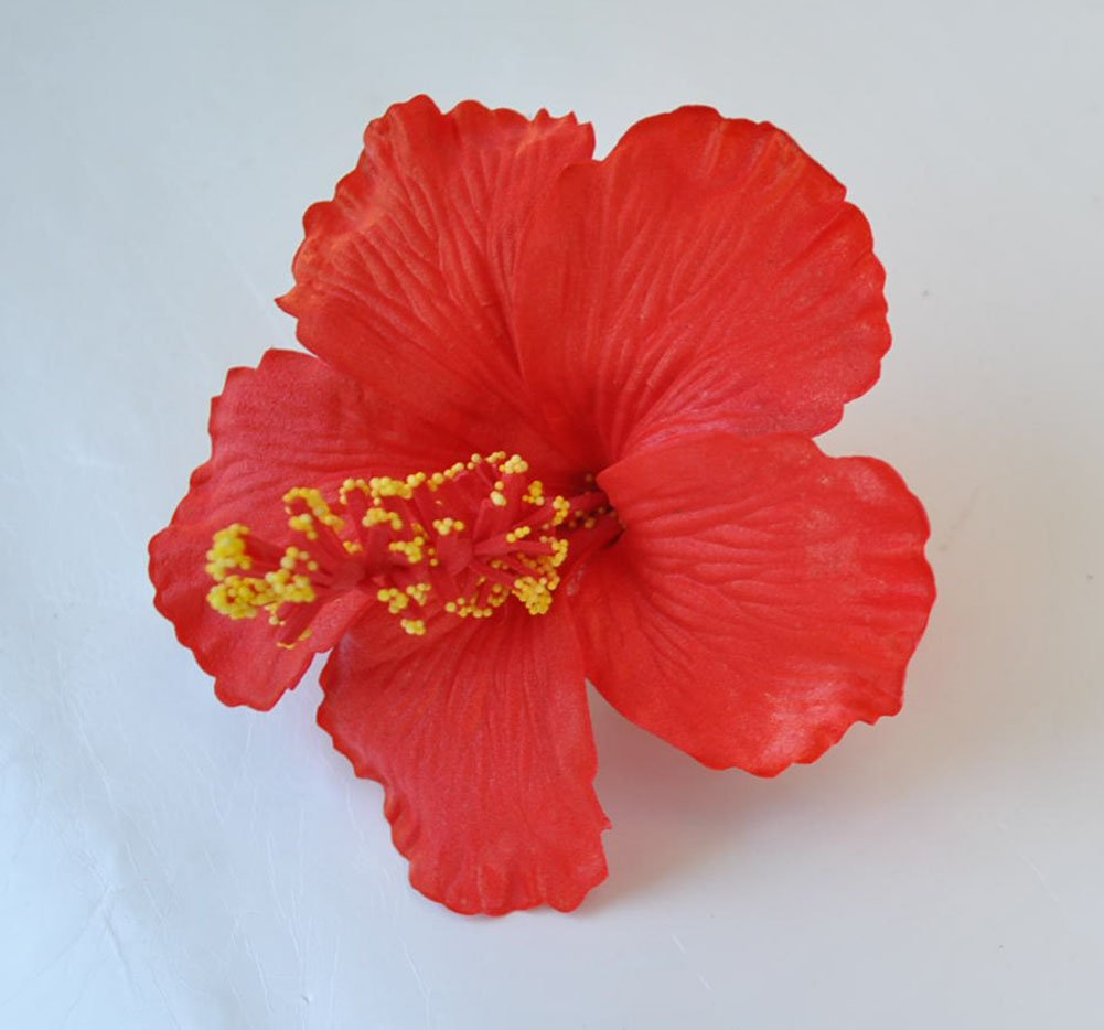 Amazon Hawaiian Red Hibiscus Sweet Flower Foam Brooch Pin Hair