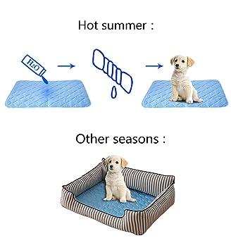 Amazon Com Angmao Coolcore Soft Cooling Dog Bed Mat