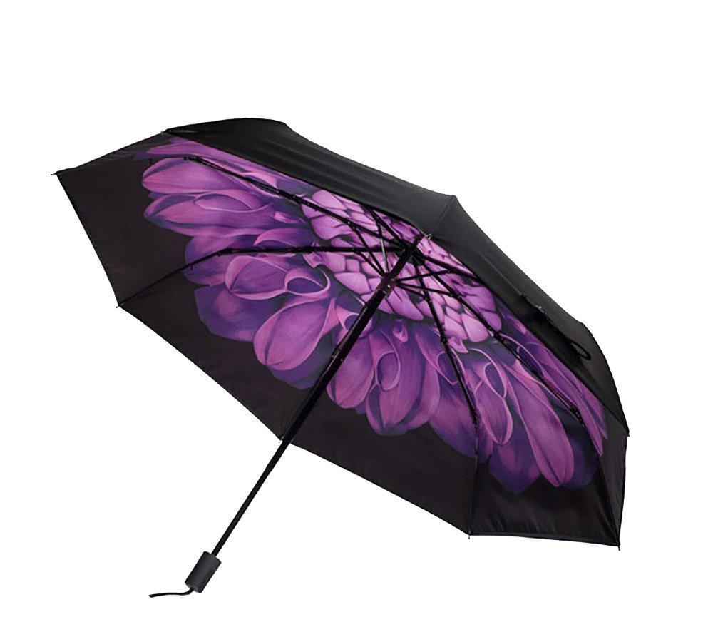 Amazon.com: Ruler Co Brands 1 Compact Travel Female Anti-UV Sun Umbrella Triple Folding UV Protected Parasol Daisy Painting Fashionable Umbrella ...