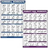 QuickFit Dumbbell Workouts and Exercise Ball Poster Set - Laminated 2 Chart Set - Dumbbell Exercise Routine & Stability/Yoga Ball Workouts (18' x 27')