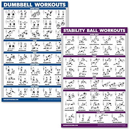 QuickFit Dumbbell Workouts and Exercise Ball Poster Set - Laminated 2 Chart Set - Dumbbell Exercise Routine & Stability/Yoga Ball Workouts (18