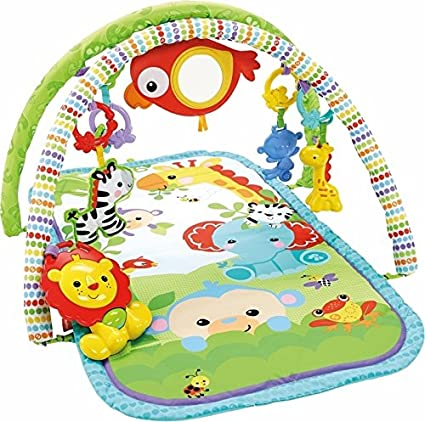 fb6b7d913 Fisher-Price Everything Baby CHP85 Multicolor - Gimnasio para bebé ( Multicolor)