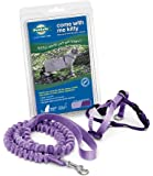 Premier Pet Come with me Kitty Harness Medium Lilac