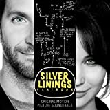 Silver Linings Playbook (Original Motion Picture Soundtrack) by unknown [2012]