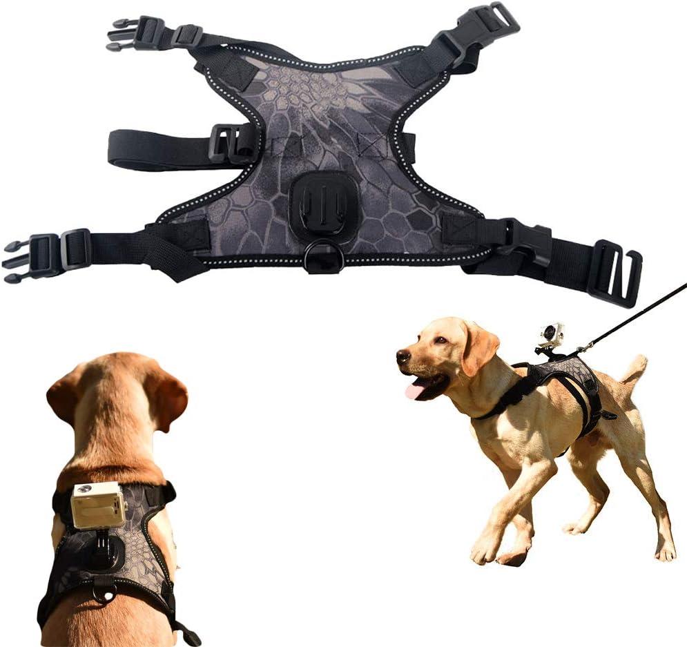 Fetch - Arnés para perro GoPro, con cámara de acción para cámara de vídeo, chaleco con cuello ajustable, 3 correas de goma para perros medianos y grandes