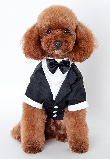 Pet Leso disfraz de perro traje esmoquin boda ropa abrigo de ...