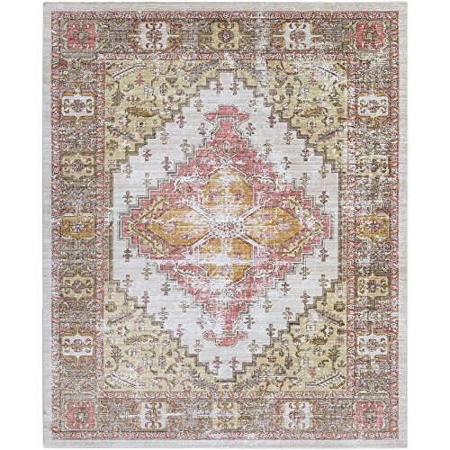 Lancelot Coral and Beige Updated Traditional Area Rug 7'10
