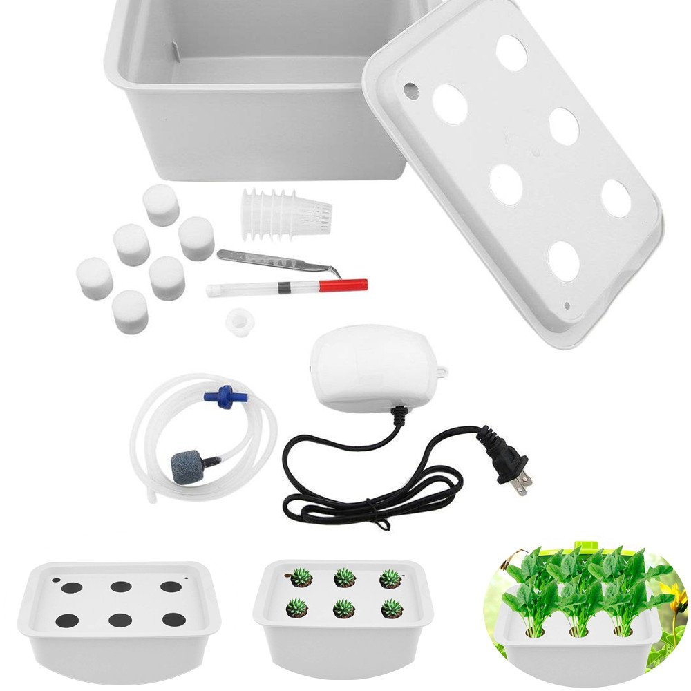 FLOURITHING 6 Holes Hydroponics Grower Kit,Propagation, and Hydroponic Experiment Indoor Outdoor