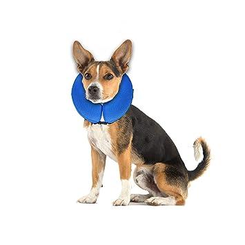 Amazon.com: E-KOMG Collar de recuperación para mascotas con ...