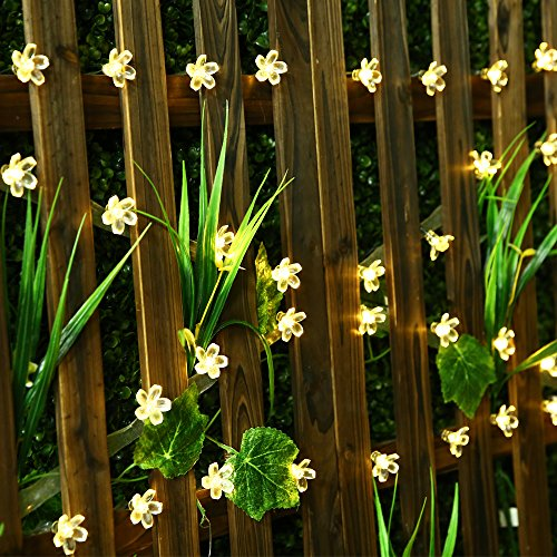 SKYFIRE Led Flower Fairy Lights,22ft 50 Led Blossom Solar Fairy Lights Solar Flower String Lights for Outdoor,Garden, Patio(Warm White)