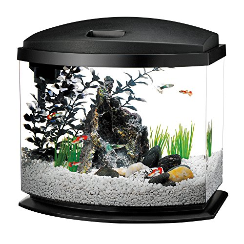 Aqueon LED MiniBow Aquarium Starter Kit with LED Lighting, 5 Gallon, Black