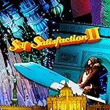 Self Satisfaction II