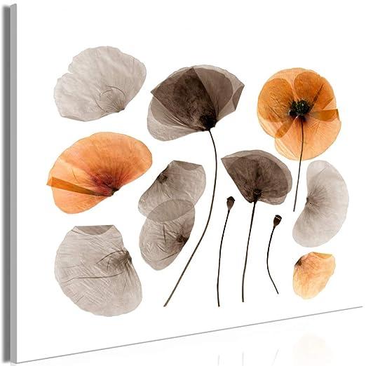 jiushice Solo Pintura de Aerosol de Flor Transparente Abstracta ...