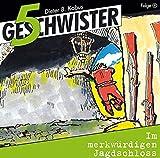5 Geschwister (Folge 9) - Im merkwürdigen Jagdschloss