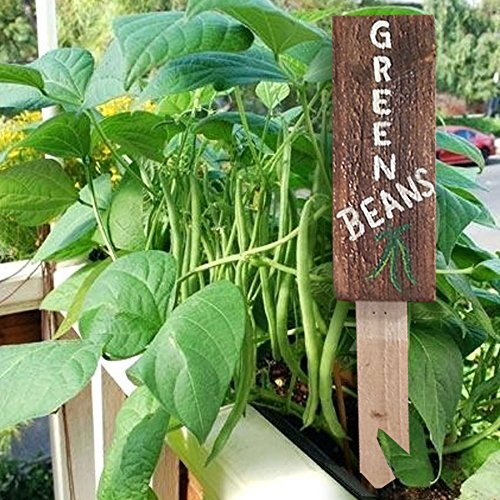 Amazon.com: Garden Sign Stake - Vegetable Garden Reclaimed Pallet ...
