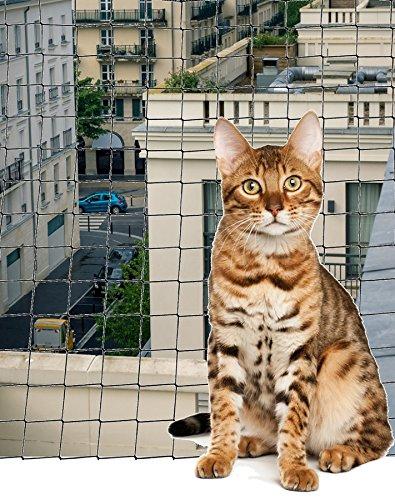 Accesorio gato - Filete de balcón anti-morsure pequeña talla: Amazon.es: Jardín