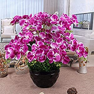 MARJON FlowersArtificial Orchid Pu Fake Flower Purple Phalaenopsis 111
