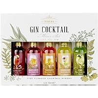 Premium Gin Cocktail Mixers Set de Regalo