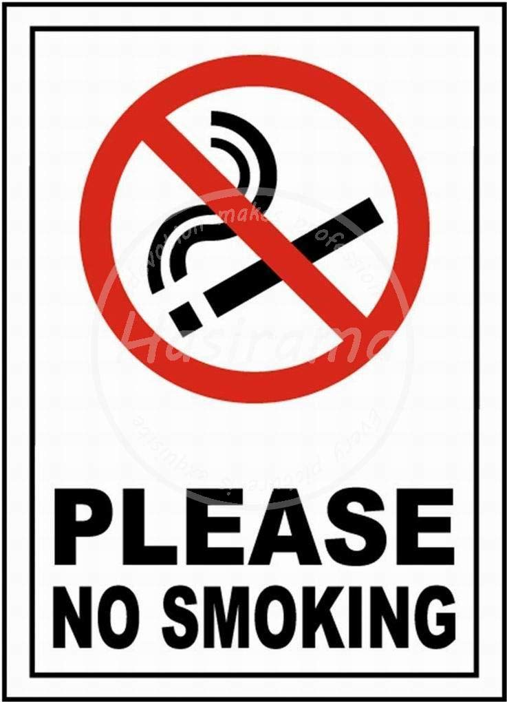 HALEY GAINES Please No Smoking Placa Cartel Póster de Pared ...