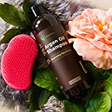 Argan Oil Daily Shampoo - 16 oz Rejuvenates Heat Damaged Hair Nourishes & Prevents Breakage Sulfate Free - All Hair Types - Dry Damaged Colored Hair - Volumizing & Moisturizing Premium Nature