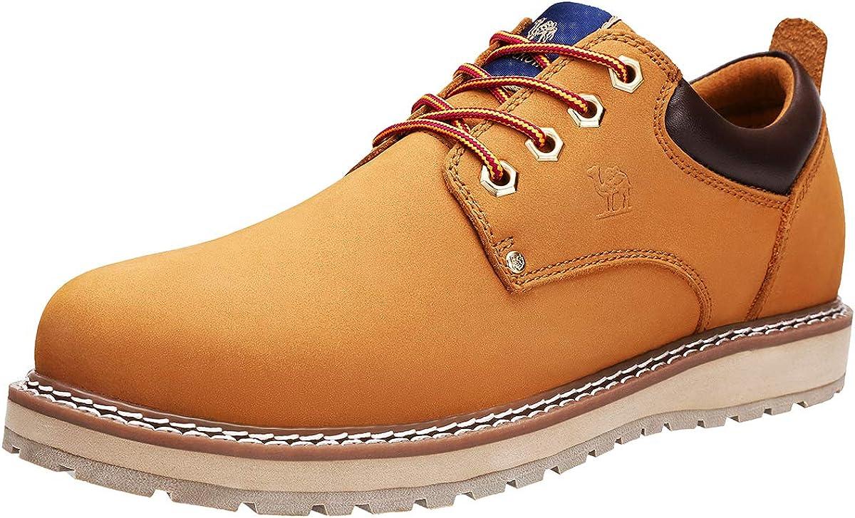 CAMEL CROWN Zapatos de Cordones para Hombre Oxford Zapatillas Casual Hombre Vestir Derby, 41-47 EU Negro Marrón Golden