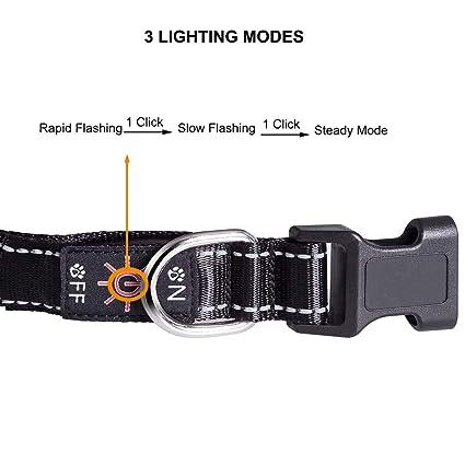 Collar de Perro Moi DOI LED, Recargable por USB, Ajustable con luz ...