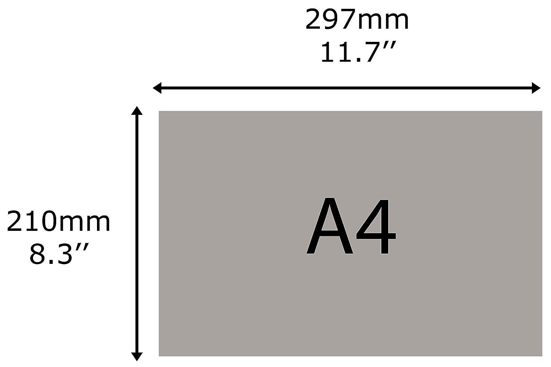Taymar C330/Single Pocket Spender f/ür Prospekthalter A4/quer Brosch/üre