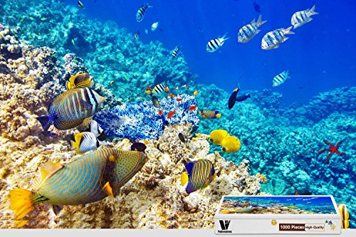 PigBangbang,29.5 X 19.6 Inch,Difficult Puzzle With Jigsaw Glue Premium Wooden - Underwater World Fish Coral Reef (Wooden Jigsaw Fish Big)