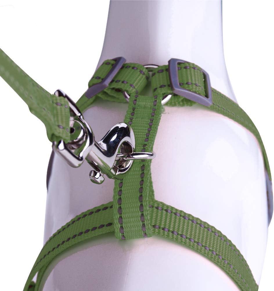 AIR Dog Harness Leash Set Light Blue Comfortable Dog Harness Plus 4 ft Reflective Dog Leash with Padded Handle Large No-Choke Dog Harness Mesh Dog Harness Puppy Leash Harness