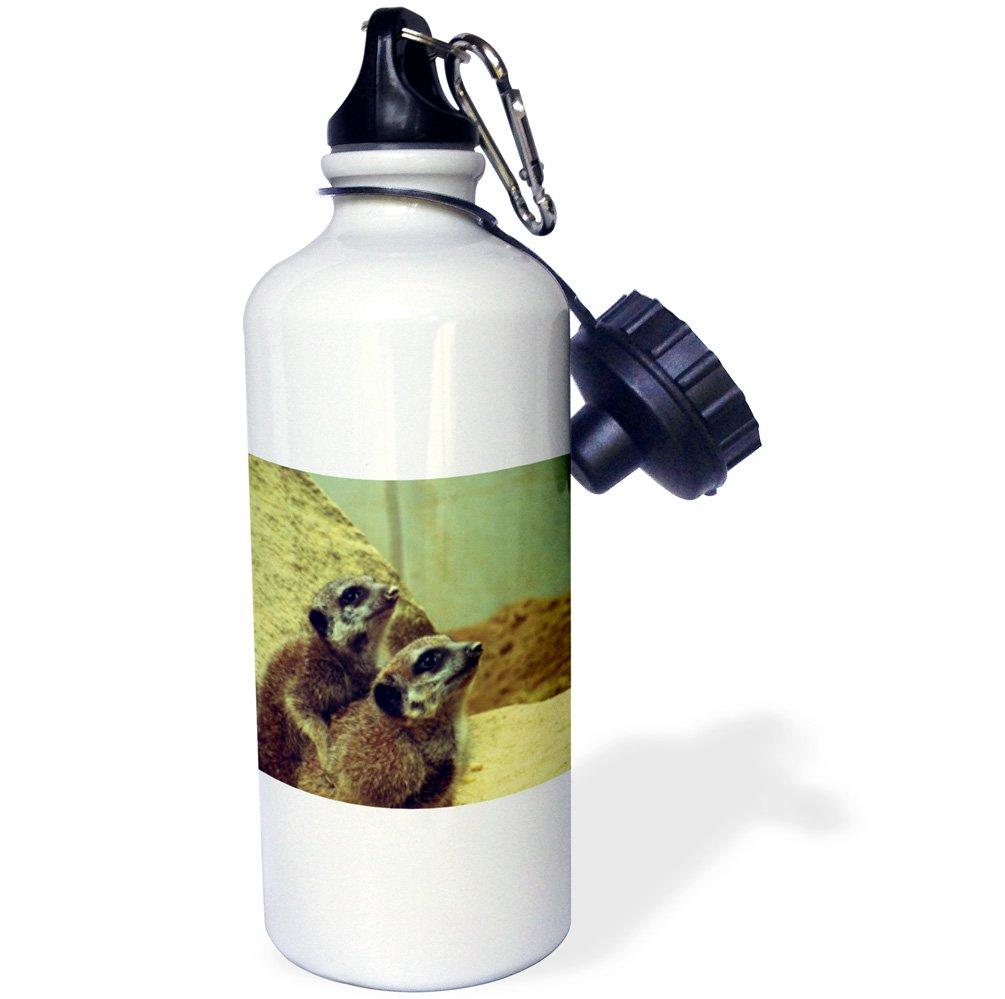3dRose wb/_182231/_1 Two Meerkat Sports Water Bottle 21oz Multicolored