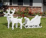 Outdoor Elegant Sleigh and Reindeer