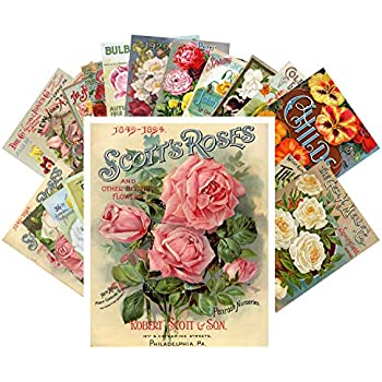 Symbol Of The Brand 32pcs Retro Flower And Plant Vintage English Material Paper Set For Scrapbooking Diy Projects/photo Album/card Making Crafts Back To Search Resultsoffice & School Supplies