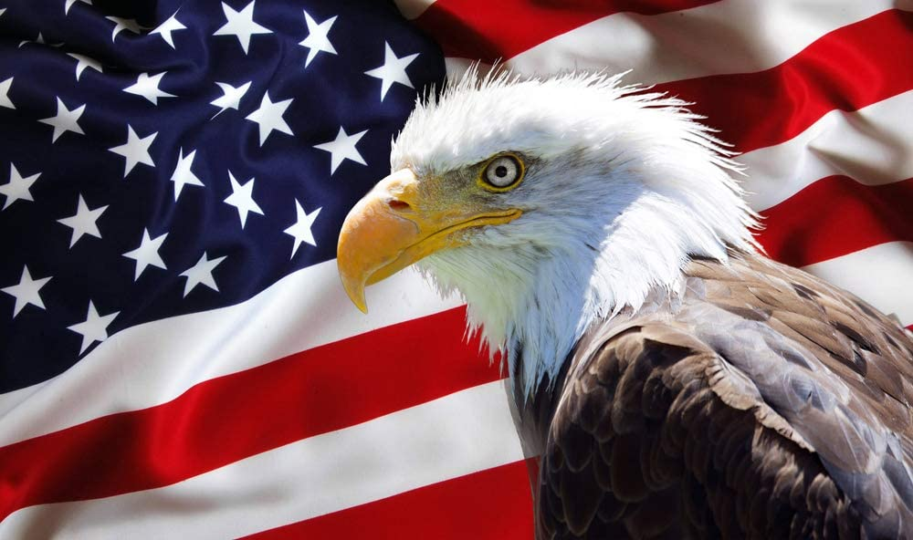 DIY Handwork Store 5D American Flag with Eagle Full Square Drills Diamond Painting Mosaic Paintings Animals Cross Stitch Kits Velvet Canvas Art Craft Decor Home(19.7''x 13