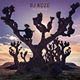 Buy DJ Koze – Knock Knock New or Used via Amazon