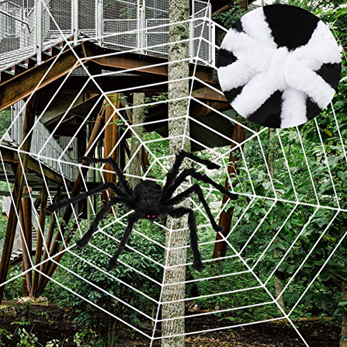 Ovipo Halloween Spider Web Decoration for Halloween Outdoor - One Spider & One Spider Web