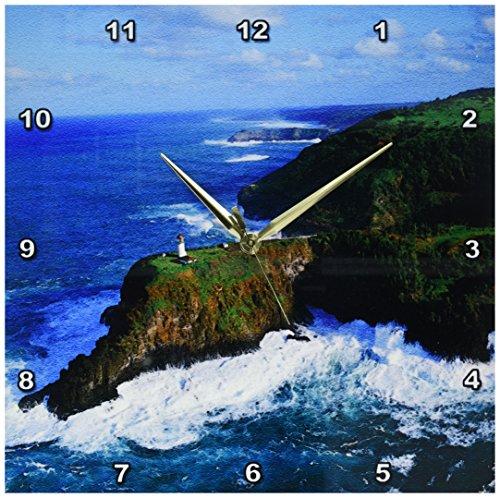 3dRose dpp_89687_2 Kilauea Lighthouse, Kauai, Hawaii, USA - US12 DPB1194 - Douglas Peebles - Wall Clock, 13 by 13-Inch by 3dRose