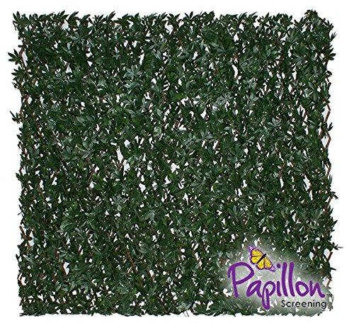 Haie Artificielle /Érable Vert sur Treillage Extensible 1 x 2m Papillon /™