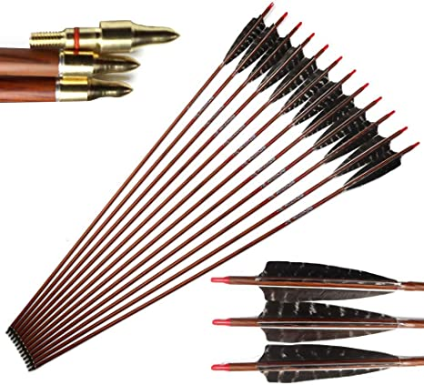 """6PCS 30/"""" chasse Carbone flèches Spine 500 Metal Tips for Compound//arc bow"""