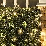 Set of 100 LED Warm White LED Net Lights