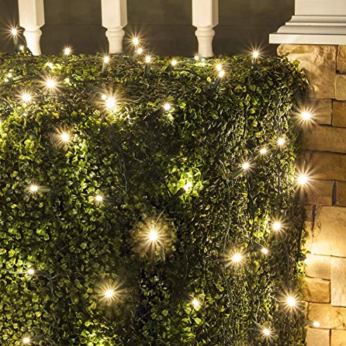 Set of 100 LED Warm White LED Net Lights - Christmas Net Lights, Outdoor Christmas Decorations, Green Wire (4 x 6 ft, 5mm Lights, Warm White) (Christmas Netting Lights)