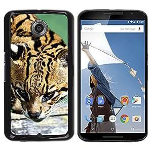 Qstar Arte & diseño plástico duro Fundas Cover Cubre Hard Case Cover para Motorola NEXUS 6 / X / Moto X Pro ( Ocelot Feline Hunter Cute Big Cat Wild)