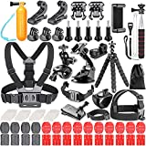 Neewer 83-In-1 Action Camera Accessory Kit for GoPro Hero Session/5 Hero 3 3+ 4 5 6 SJ4000 5000 6000 DBPOWER AKASO VicTsing APEMAN WiMiUS Rollei QUMOX Lightdow Campark Sony Sports DV and More