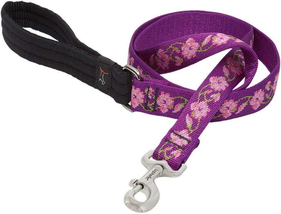 LupinePet 1 Inch Rose Garden Padded Handle Dog Leash