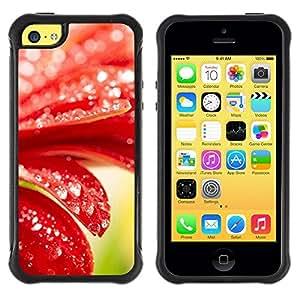 "Hypernova Defender Series TPU protection Cas Case Coque pour Apple iPhone 5C [Planta Naturaleza Forrest Flor 98""]"
