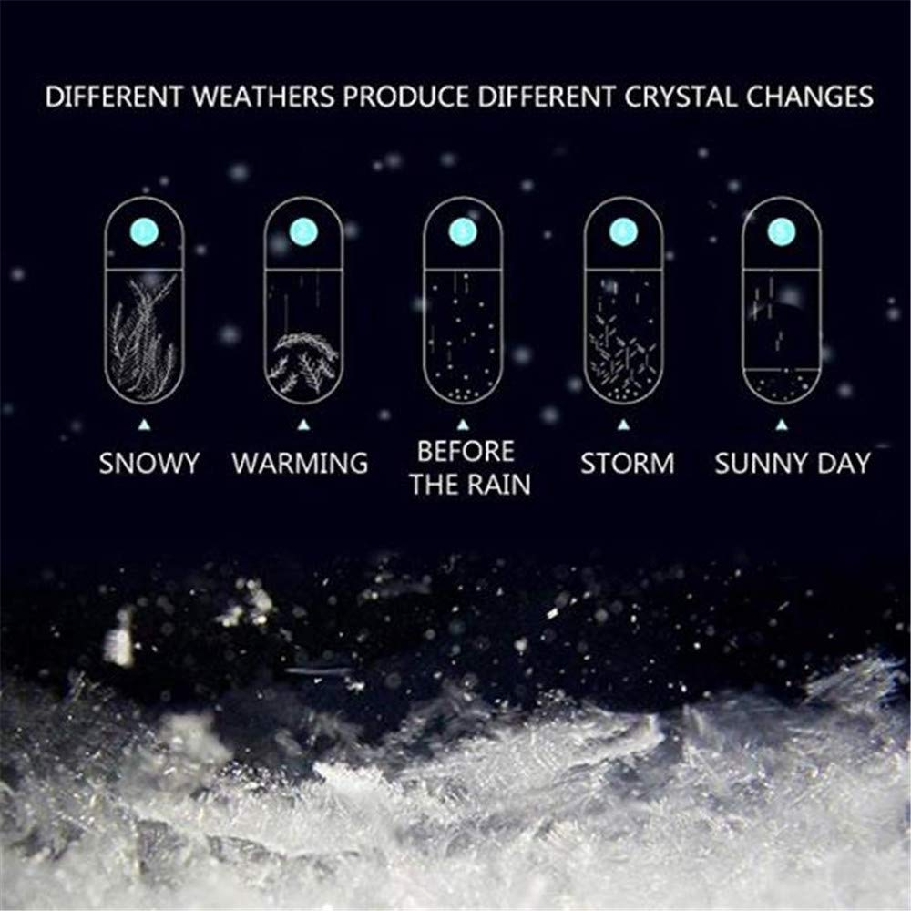 FasterS Storm Glass Weather Predicting Forecast Bottle Crystal Desktop Barometer with Wooden Base Crafts for Home Office Decors Creative Birthday Crystal Ball