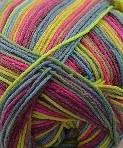 Berroco Comfort Sock #1828 Wakatipu