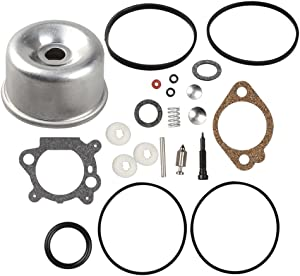 Buckbock 493762 Carburetor Overhaul Kit and Float Bowl for Briggs and Stratton 498260 492495 796611 493640 490937 398183 498261 for 20-141-1 20-141 carb fit for 3.5 4HP Max Series Engine