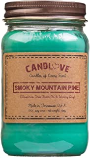 """product image for Candlove """"Smoky Mountain Pine"""" Scented 16oz Mason Jar Candle 100% Soy Made in The USA"""