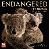 Endangered: Photo Ark 2016 Wall Calendar
